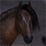 HiveWire Horse